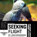 SeekingFlight