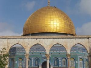 interfaith-peace-builders-delegation-olive-harvest-137
