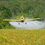 Superweeds In Half Of All US Farms
