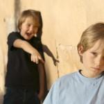 Monona's Anti-Bullying Ordinance