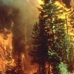 Raging Wildfires Continue in the West