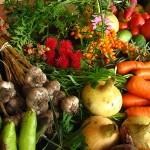 The Taste of Organics