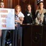 Wisconsin Republicans Pushing 20-Week Abortion Ban