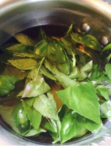 Basil Gimlet Recipe2