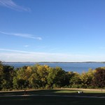 Zebra Mussels in Lake Mendota