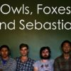 Owls-Foxes-and-Sebastian