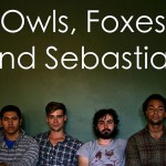 Owls, Foxes and Sebastian At The Stacks