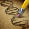 Gene Editing by cutting out specific genes