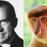 Always with the Nixon and the Monkeys
