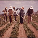 new Workers' Rights Center report highlights continued abuse of migrant workers