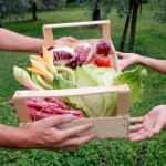 Healthy Food for All: community effort feeds low-income families