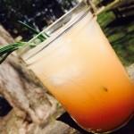 Gin & Juice (AKA Greyhound)