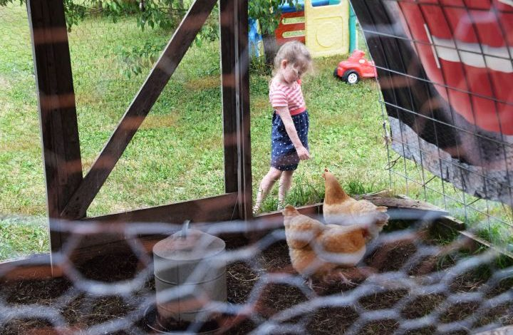 Girl and chickens