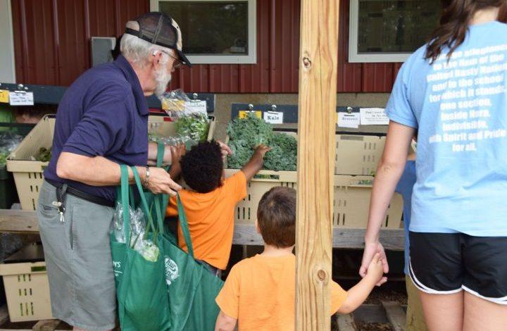 Kids reaching for kale