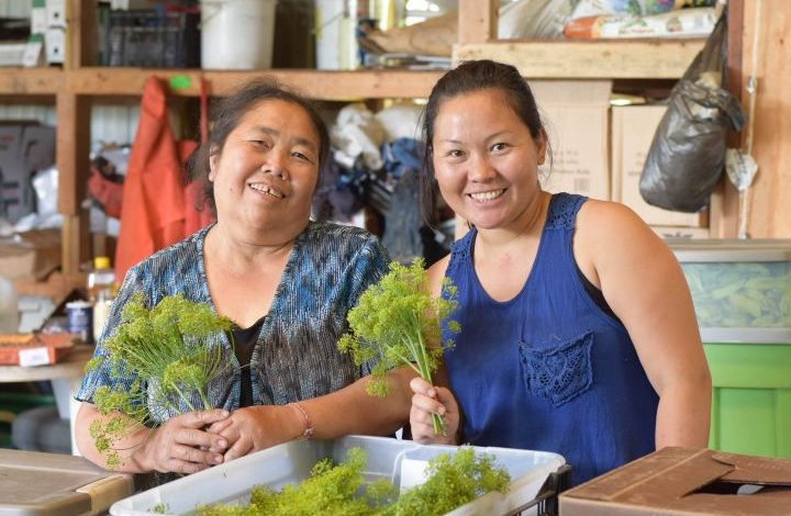 Yee's mom and sister holding stalks of dill herb