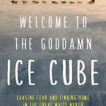 """Welcome to the Goddamn Ice-Cube"" by Blair Braverman"