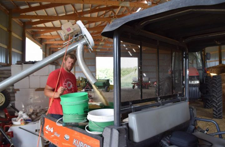 Chris filling grain buckets.