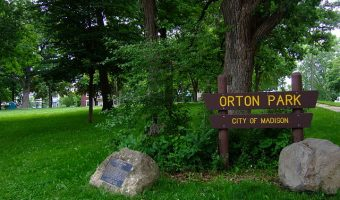 Put yourself in the picture: Orton Park Festival 2016