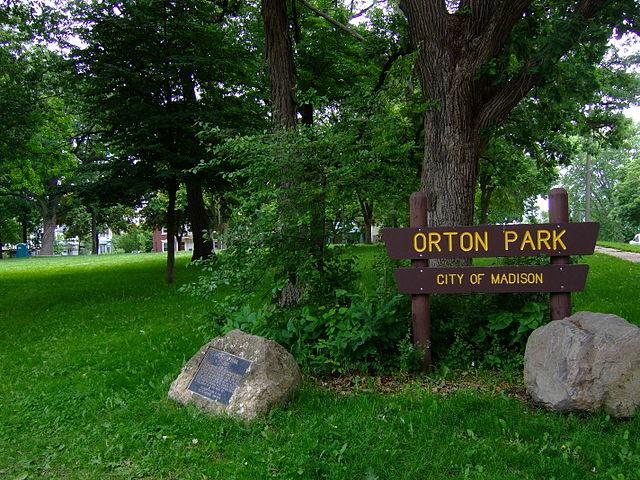 Put yourself in the picture: Orton Park Festival 2016
