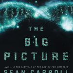 The Big Picture; An interview with Professor Sean Carroll
