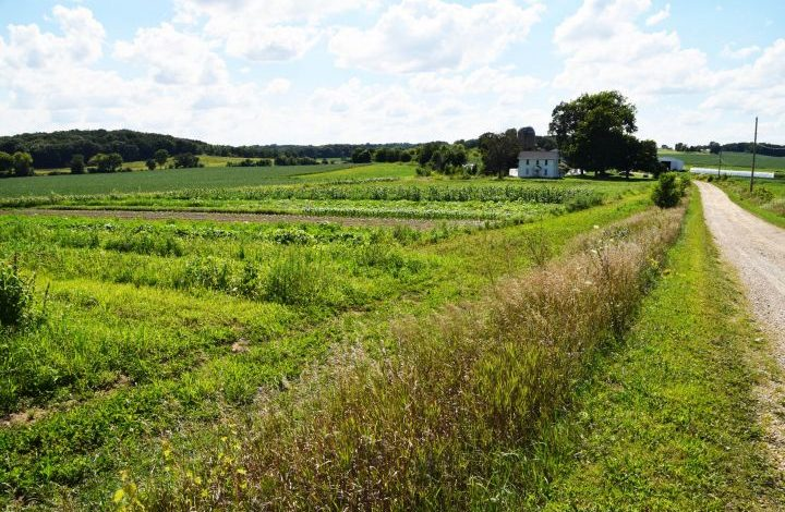 View of farm down a country lane