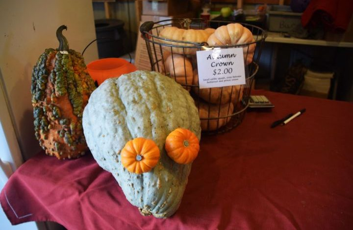 Large green gourd with orange eyes made from two small pumpkins