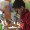 Photo of youth scientist peering into a microscope from wisconsinsciencefest.org