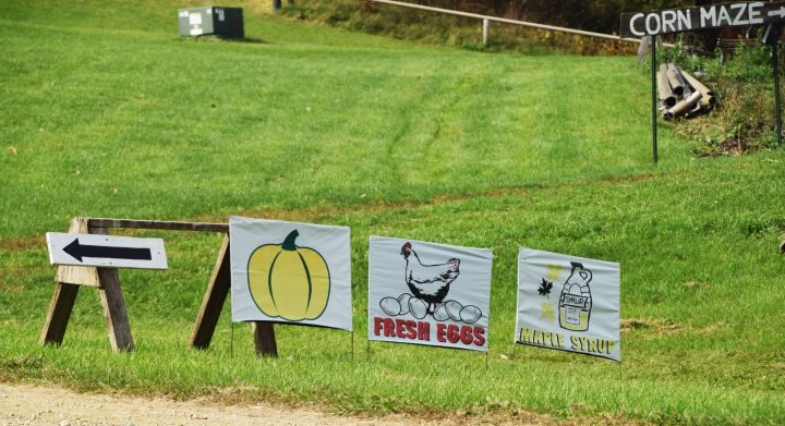 Signs for pumpkin, eggs and maple syrup