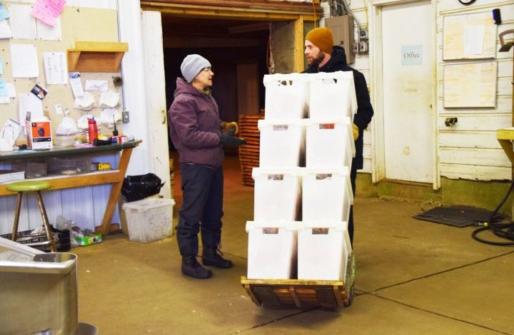 Barb and her son Eric talking as Eric wheels a hand truck filled with white produce boxes