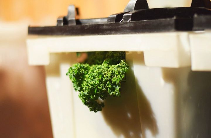 Prodice box with a piece of kale sticking out of the handle hole