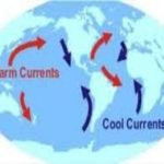 Collapsing AMOC and Climate Change