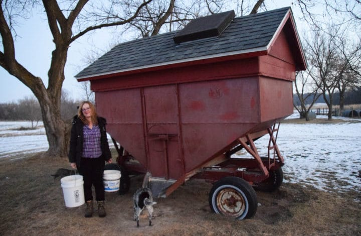 Farmer Kriss with two buckets of grain in front of grain trailer with dog