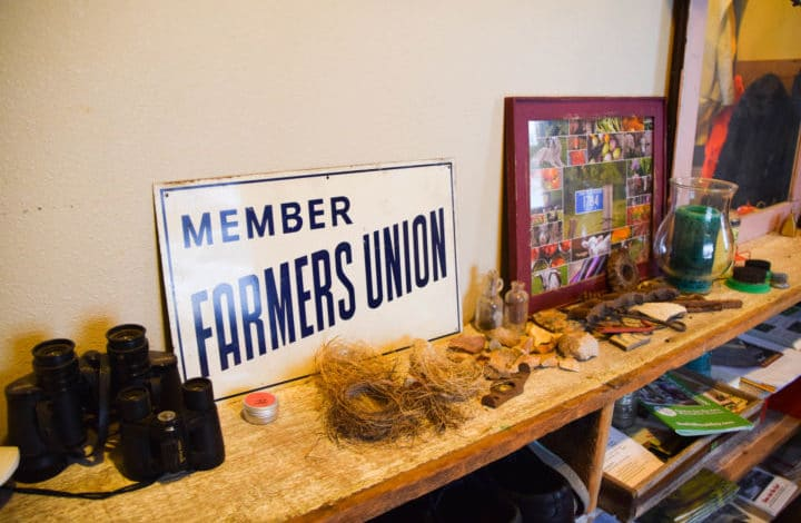 Farmers Union sign, bird nests, photos on shelf