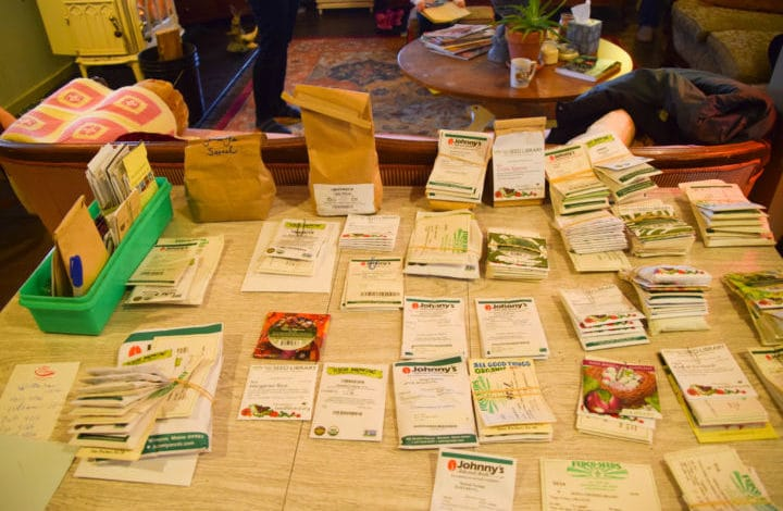 Seed packs spread out on table