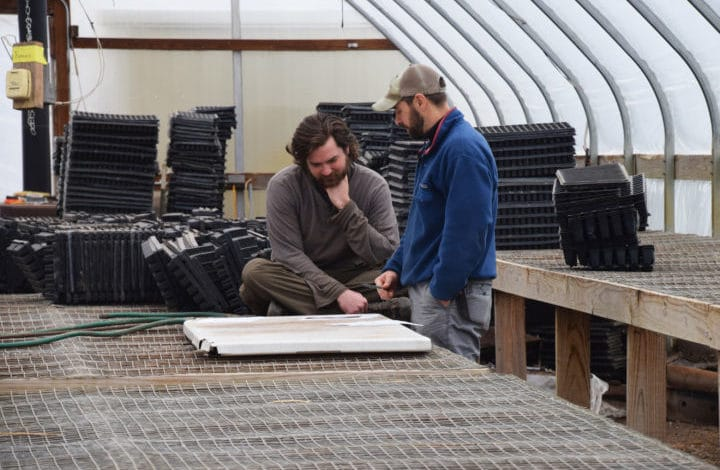 Two men talking in a greenhouse