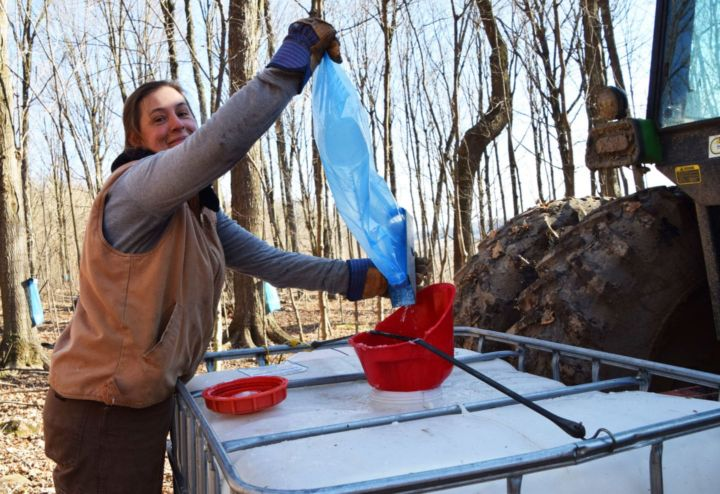 Heidi Accola: Making Maple Syrup at Roots & Shoots CSA