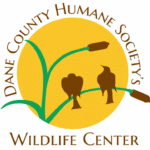 Meet Jackie Edmunds, Host of Wildlife Weekly