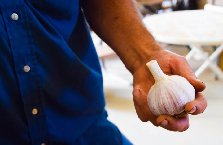 Tim holds a head of garlic
