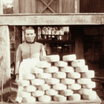 Wisconsin women in cheesemaking