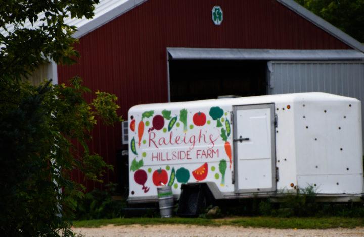 Raleighs-Hillside-Farm-0502