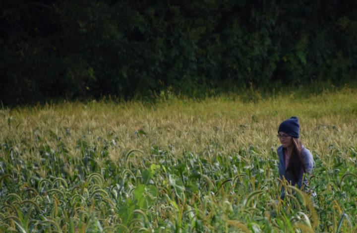 Raleighs-Hillside-Farm-0554