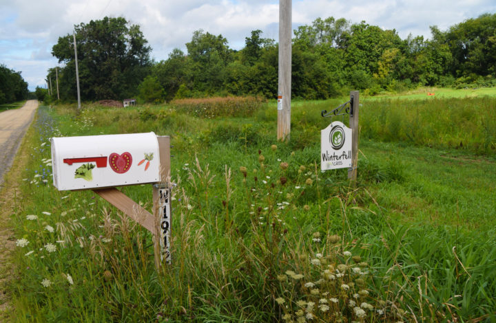 Sign and mailbox