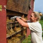 Katy Dickson: Coming Home to Christensen's Farm