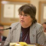 State Senator Kathleen Vinehout Announces Run for Governor