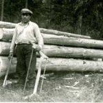 Lumberjack songs and poems, studied