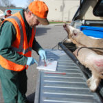 More on Chronic Wasting Disease