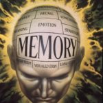 Memories: The Brain and the Research