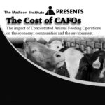 The Cost of CAFOs