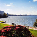 Changing Climate & Changing Needs Impact Madison Parks
