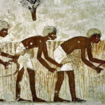 Climate Change from Ancient Farming
